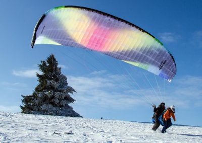 Papillon_42_Winter_01